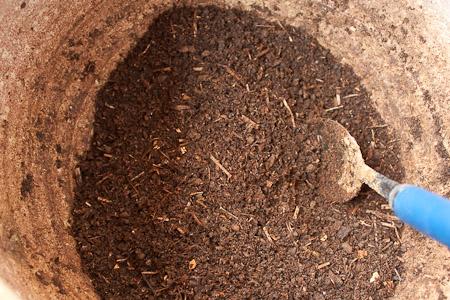 Il terzo vaso contiene il compost maturo