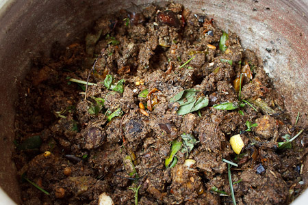 Il primo vaso contiene gli scarti freschi