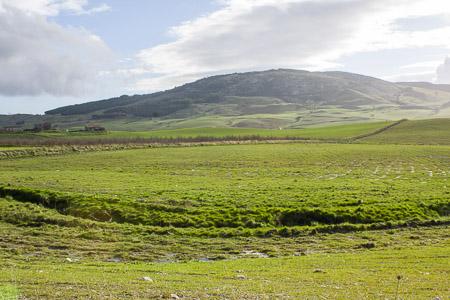 panorama_asparagi2