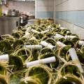 Le bottiglie tagliate che contenevano i panini di accompagnamento. Allegata ad ogni bottiglia, una piccola pergamena con la ricetta da poter realizzare a casa.
